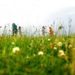 Umweltbildungseinsatz auf der Wiese im Nationalpark Hainich. © Lisa Mäder