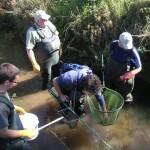 Ehrenamtliche Flusskrebswarte im Biosphärenreservat Rhön/Hessen