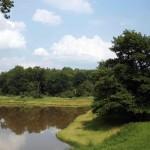 Biosphärenreservat Mittelelbe - Mirko Pannach