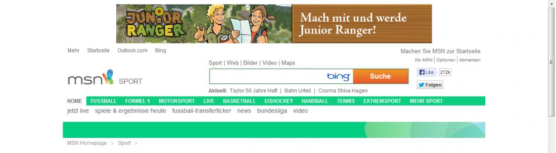MSN Screenshot_Ausschnitt