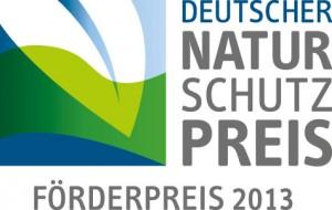 DNP_Logo_Foerderpreis2013