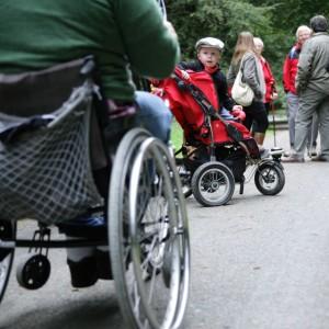 Barrierefrei unterwegs im Wilden Kermeter. Bild: Nationalparkverwaltung Eifel