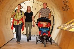 """""""Der Wilde Weg"""" - ein Highlight im barrierefreien Naturerleben: Hier ein begehbarer Stammtunnel, der auf dem Wilden Weg neue Sichtweisen auf das Thema """"Totholz"""" eröffnet (Foto: Deutsche Bahn AG / H.-D. Budde)"""