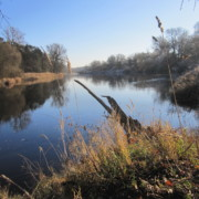 Fluss mit bewachsenen Ufern
