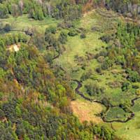 Pulsnitzaue im Wildnisgebiet NSG Königsbrücker Heide - Foto: Dirk Synatzschke