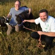 Die Gnadenhof-Blühwiese Blumiges Melle ist das Naturwunder 2018