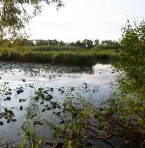 Alte Elbe Klieken © EUROPARC Deutschland
